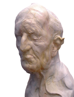 Fluidos José Manuel Martínez Pérez